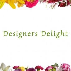 Designers Delight